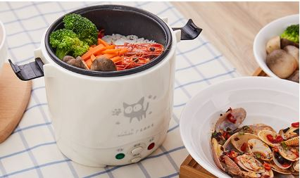 rice cooker used at home 110v 220v or 12v car for 24vv enough for two people