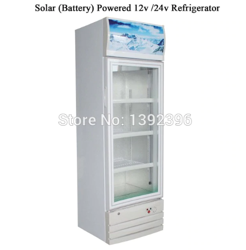 Solar Battery Powered DC 12v /24v Refrigerator-208L